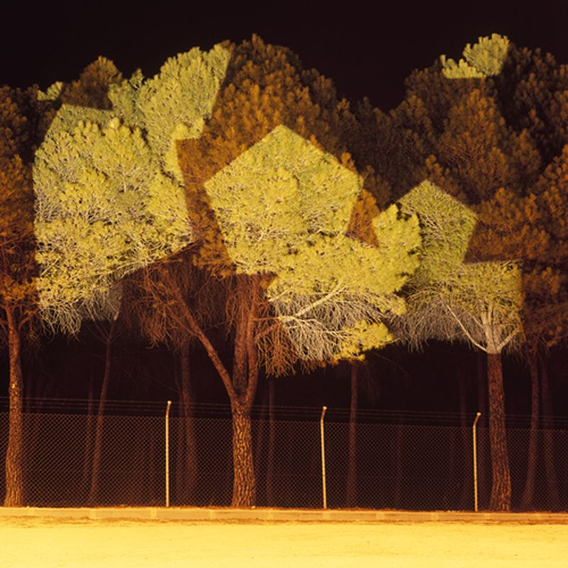 image: Light projection over nature by paulojfutre