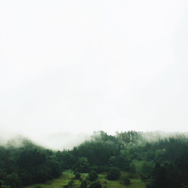 image: La niebla es la mejor creacin de la naturaleza  #lategr by nacho_limpo