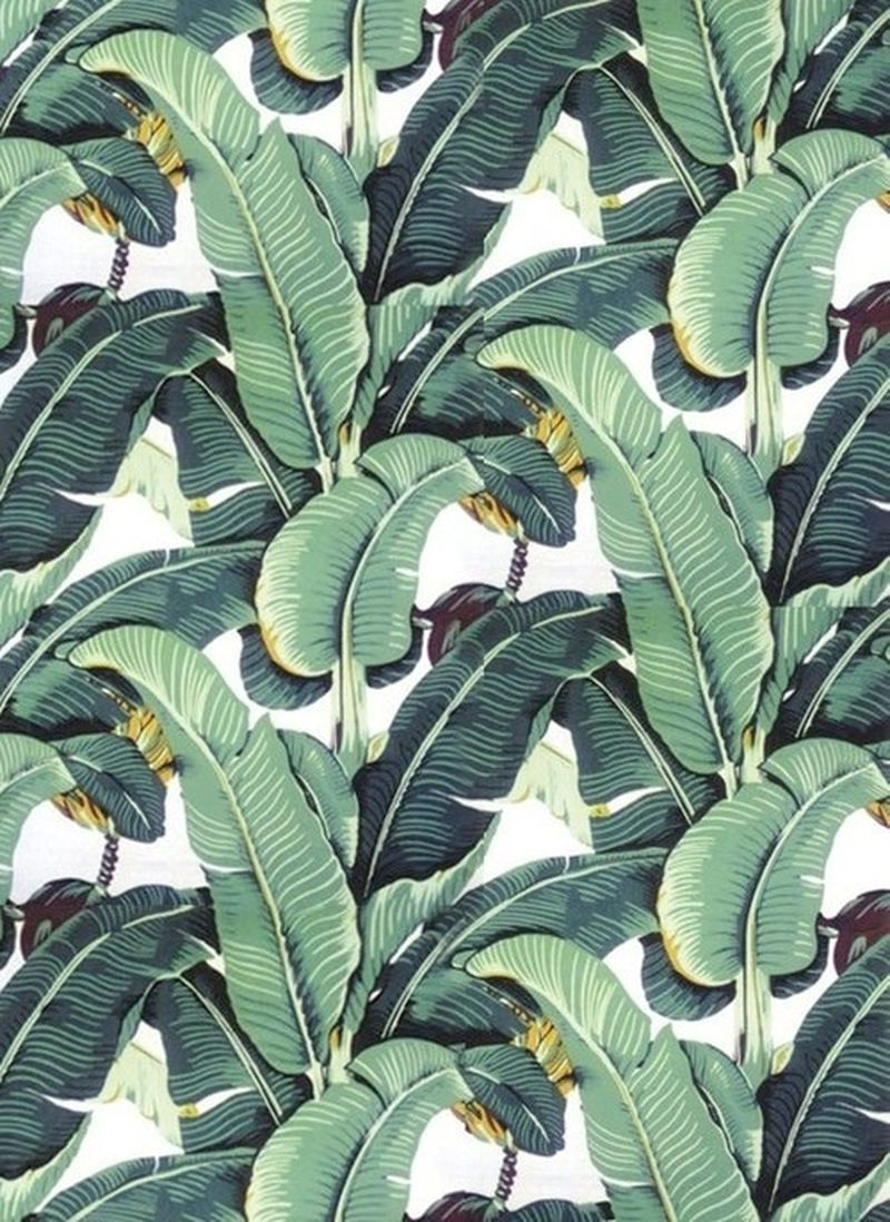 image: green bamboo by macarenaobregon