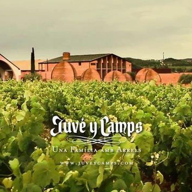 video: Juve y Camps by rosabcn