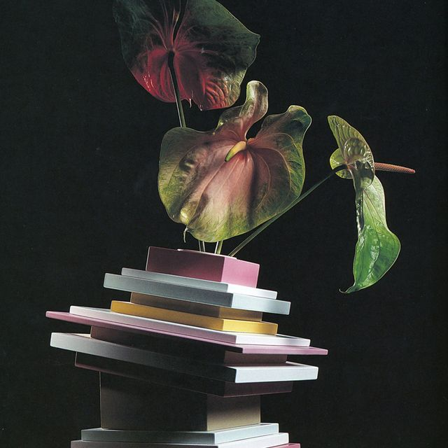 image: stack of notes loves the plant by oculto