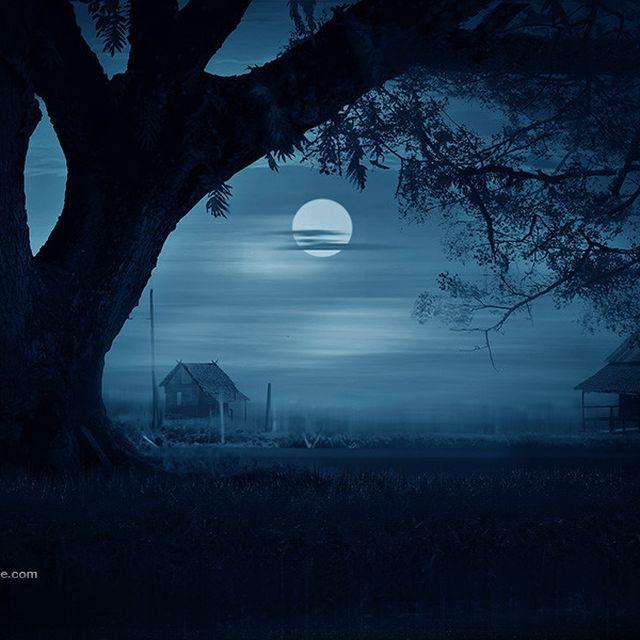 image: Dark light by --iD-- by pegartblog
