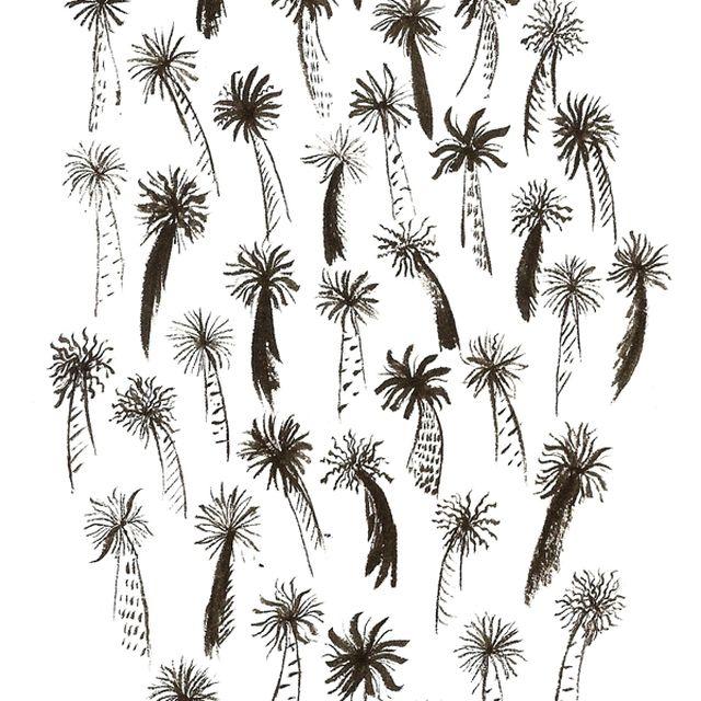 image: Palms by mariaramirez