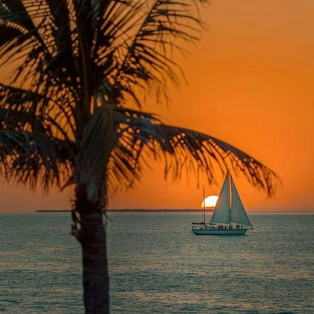 image: One of my favorite Key West photographers @ovimustea got this great pic of Floridays during our sunset sail last night. Thanks Ovi!.? sent to us by @floridayskeywest by sailing_boats