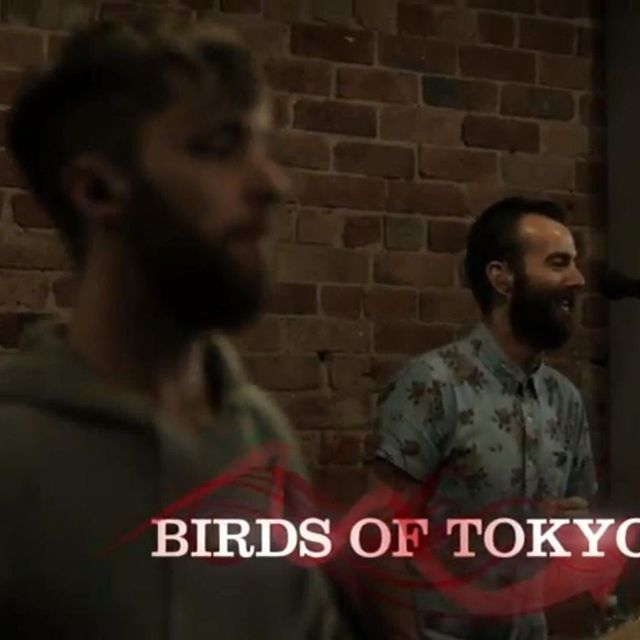 video: Birds of Tokyo - This Fire by mayweather