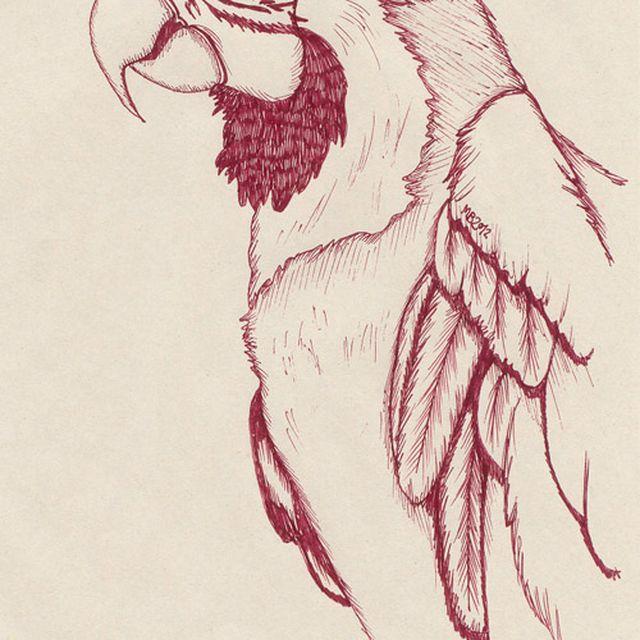 image: Little bird by marta_brandariz