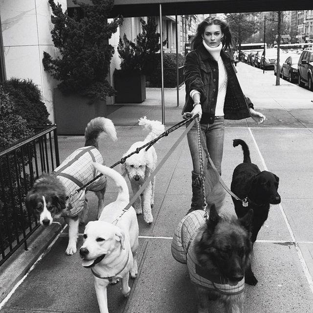 image: Grace Elizabeth taking a nice stroll in @vogueparis 🐕🐕 by terrryrichardson