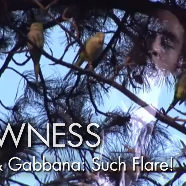 video: DOLCE&GABBANA INSPIRATION FILM. TRAILER by luciaode