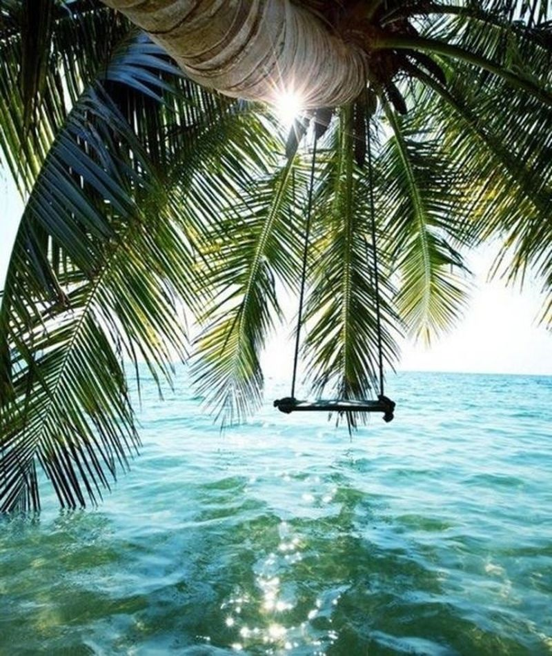 image: Paradise by blancus