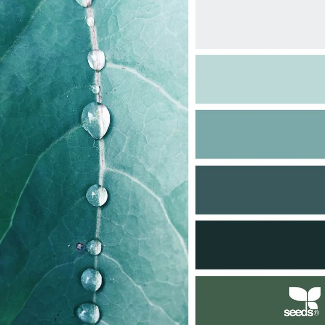 image: Nature-Inspired Color Palettes by jenniferasos