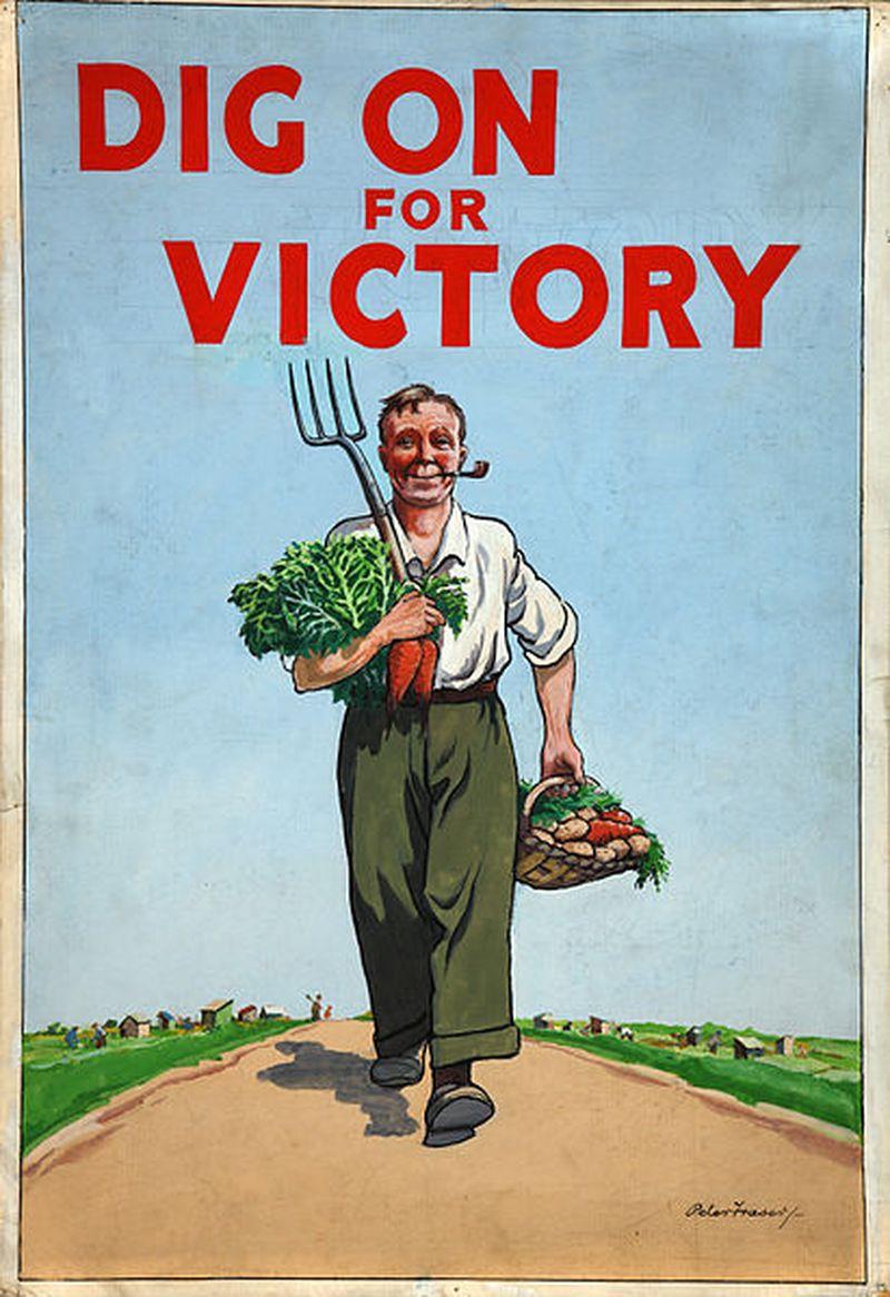 image: Victory Garden by merilin-kook
