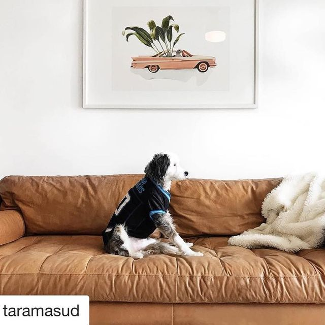 image: How cool is this!! My art in this beautiful Home in NC and that super cute dog @sirbaxterfly watching football ?. I couldn't be happier @taramasud and Sir Baxterfly ?? Prints: www.society6.com/vintageart by vintageart_originals