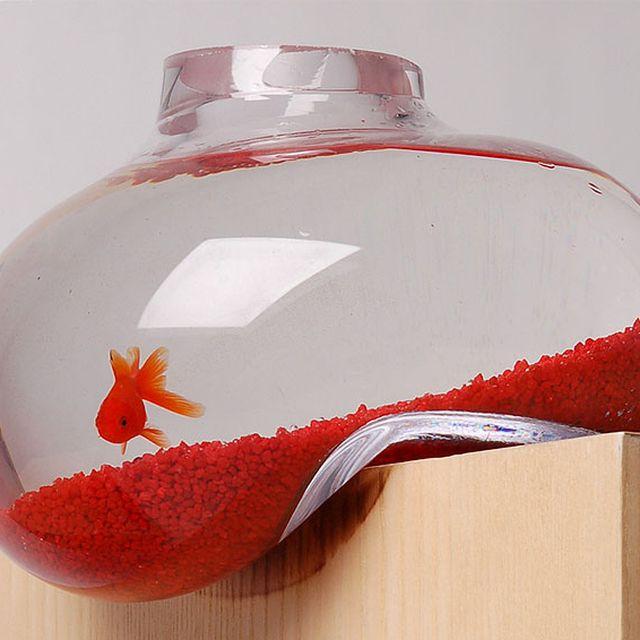 image: Melted Aquarium by paulojfutre