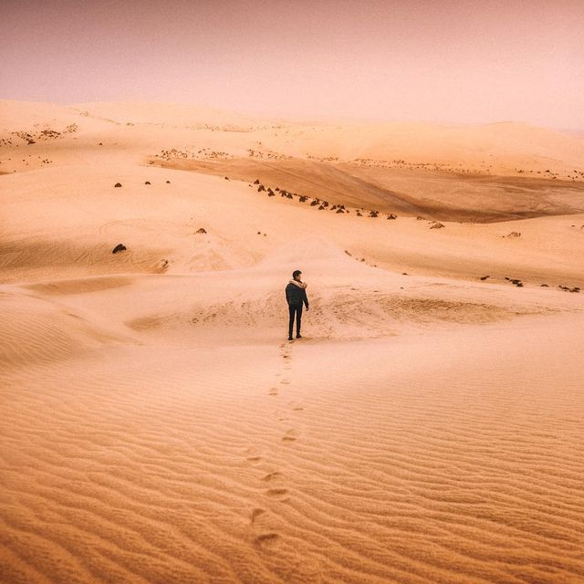image: Hello Qatar ✨First time doing desert Safari in Qatar, this place is beyond beautiful...Unforgettable moments, driving through the desert and suddenly meeting wild camels along our journey ? #qatarairways #visitqatar #goingplacestogether by iwwm