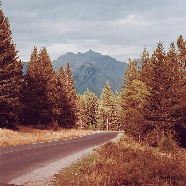 image: twin peaks ? by piariverola