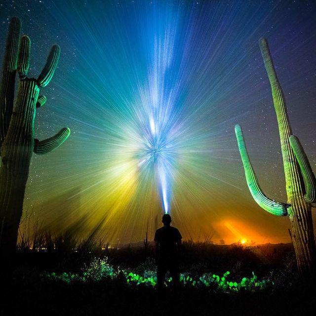 image: Saguaro National Park - Tucson, AZ. by seanparkerphotography
