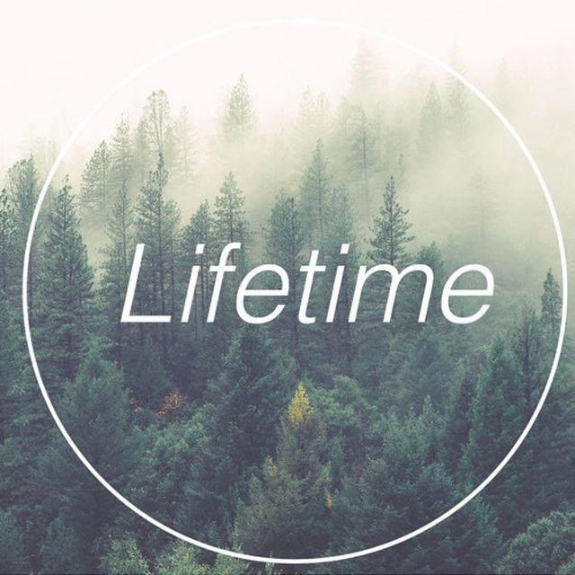 music: Lifetime by holy_c?ne by codec