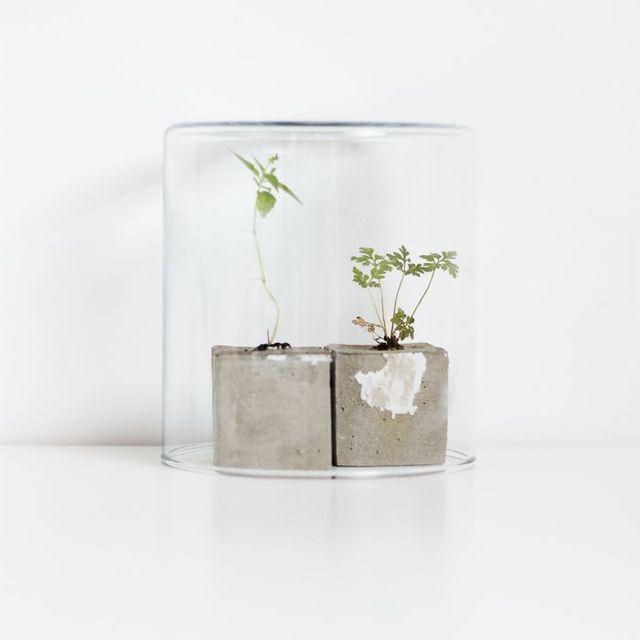 image: MINI CONCRETE PLANTERS by anurbanvillage