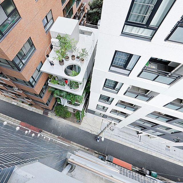 image: Garden & House - Tokyo by Ryue Nishizawa by marinaperezcimas