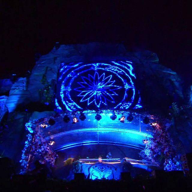 video: Tomorrowland 2013 - Avicii by martanicolas