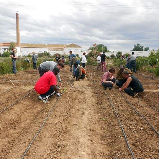 image: Trabajando la tierra para alimentar el futuro by cornelius