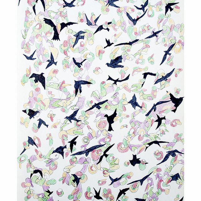 image: -free birds- by noumenow
