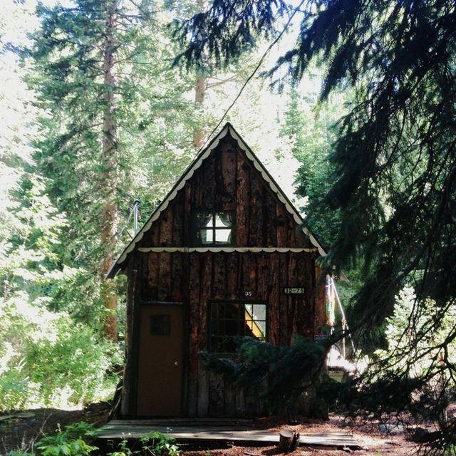 image: Cabin by nasti