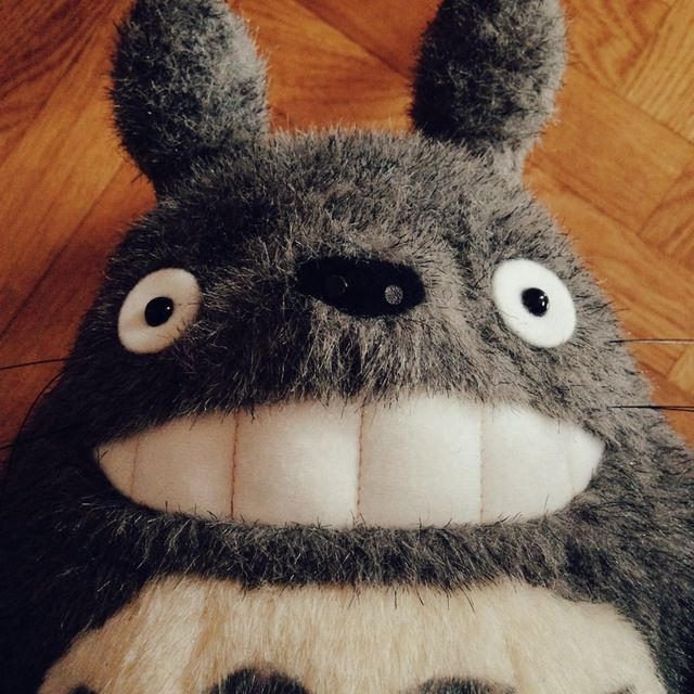 image: My room mate Totoro by cascanuit