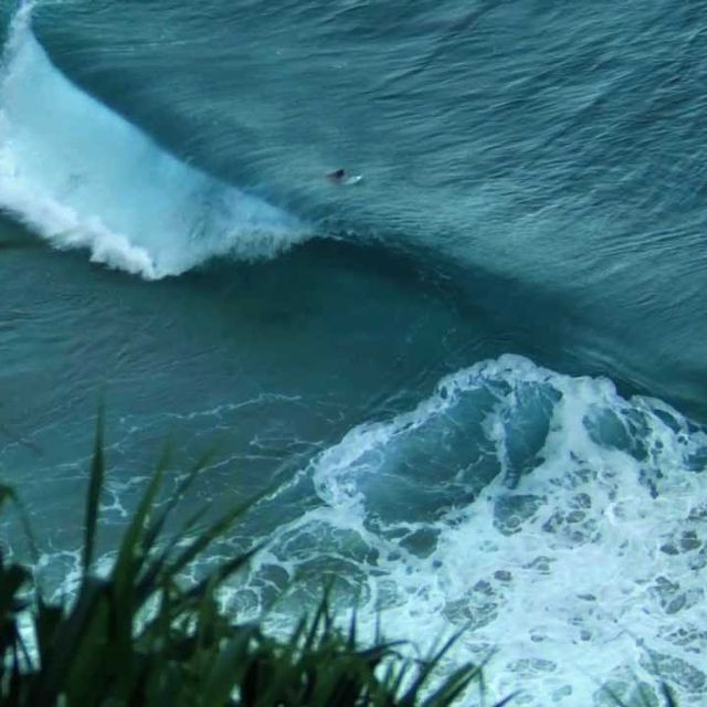 video: The Goodwin project by alex-alarco