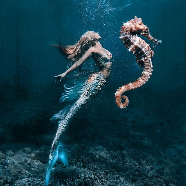 image: Mermaid's....Model: @hannahmermaid Mermaid photo @_jimward_#TheWeekOnInstagram #artsy #Ps_Countdown #portrait #dreamchatcher #artbasel #MadeToCreate #whpfriendship @instagram #instagram #eyeson by artside