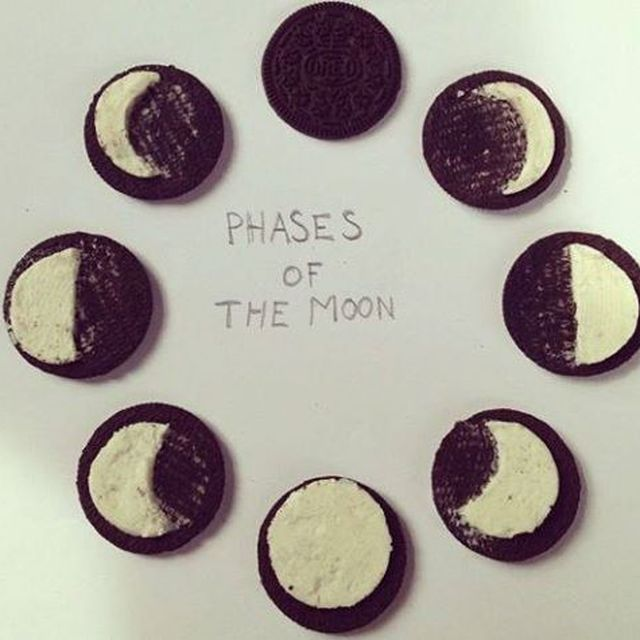 image: Phases of the Moon by danielgc
