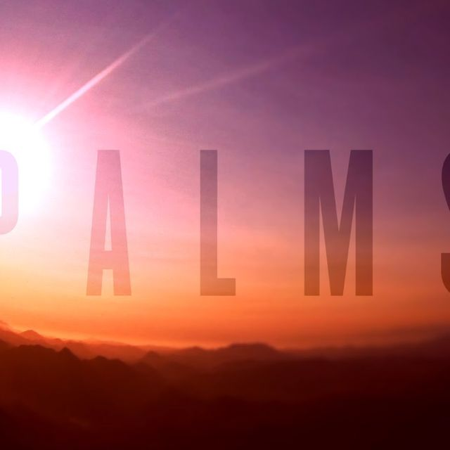 video: Palms - Future Warrior by scatterbrainer