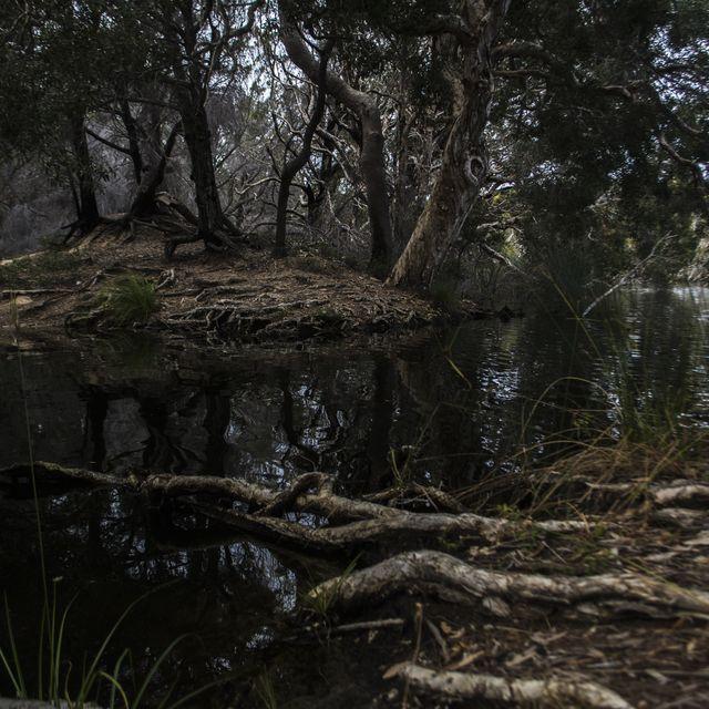image: Black water by myles