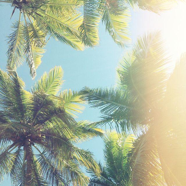 image: Perfect sky by missatlaplaya