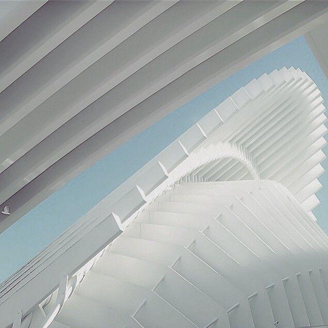 image: It's white by alemor73