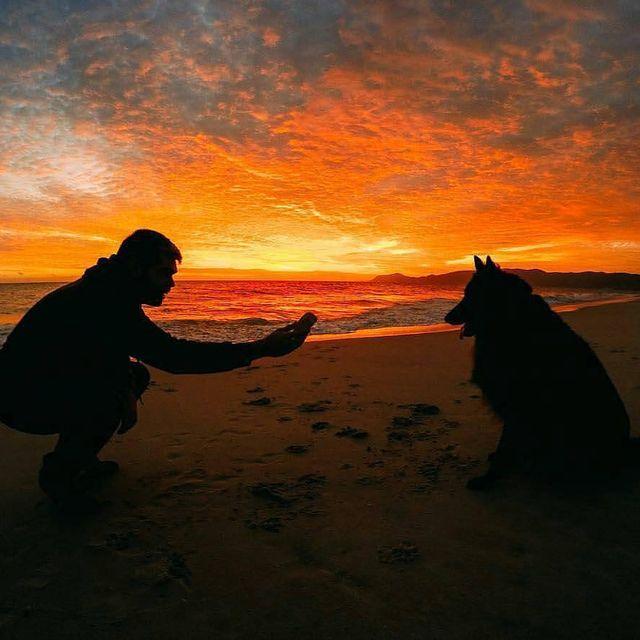 image: Sunset captured...??????? @crafafidalgo--Follow @whatasunset-To be featured please send us a DM or: ????#whatasunset--#sunsets #sunset_madness #instagood #photooftheday #nature #sun #sky #sunset #clouds #landscape #sunshine #sunny #sunrise #natu by whatasunset1