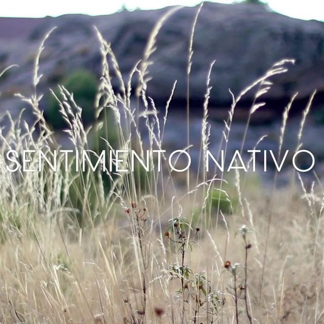video: Sentimiento nativo by anittabaker