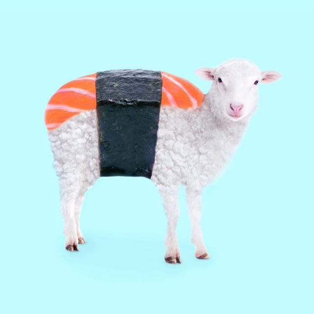 image: Susheep ?? On my way to the beach for a month! ? ••#nomad #nomadlife #sushi #sushilovers #sheep #whptwinning #instaanimal #salmon #pastellife #nikonmx #paulfuentes by paulfuentes_design