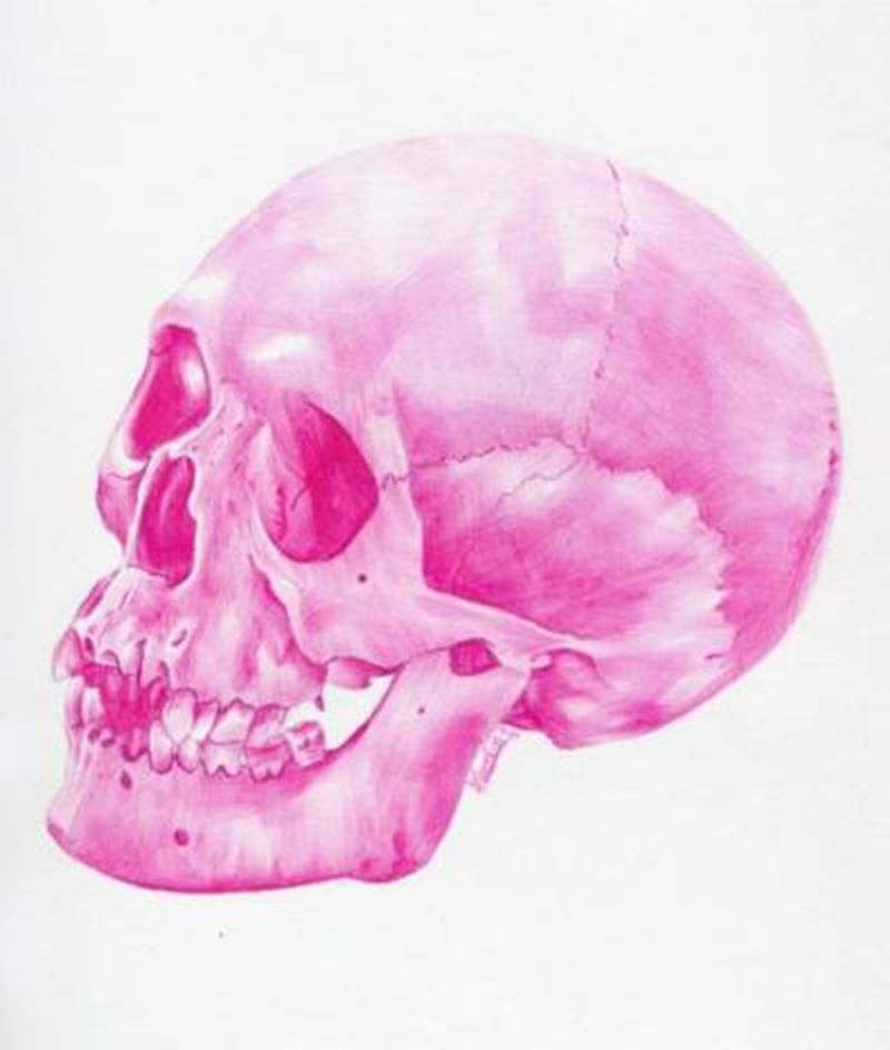image: Pink skull by tam