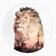 ciscographie's avatar