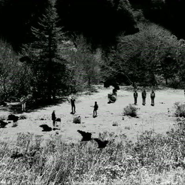 video: Feist - Graveyard by ligula
