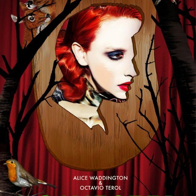 image: My posters / Flyer 23 F de 2013, con @Alice Waddington by octavioterol