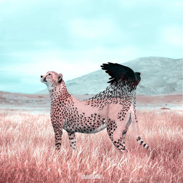 image: Reborn. by julientabet
