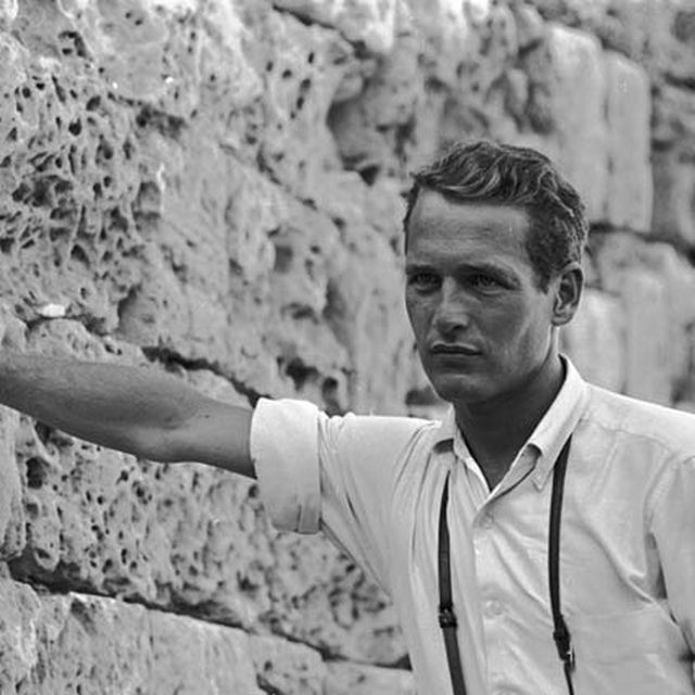 image: Young Paul Newman by danielgc