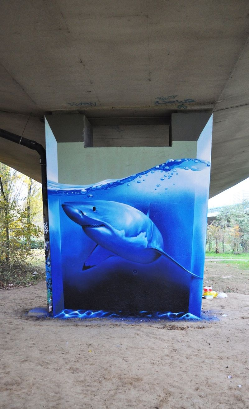 image: Shark in concrete by patrick