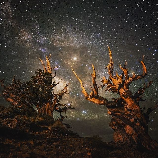 image: Hey guys! Sorry for the lack of posts lately. I've been leading an eastern California photography workshop since Saturday! We've been getting some amazing photos from Trona, Death Valley, and Bristlecone. It's been quite the adventure! Next stop Mono... by seanparkerphotography