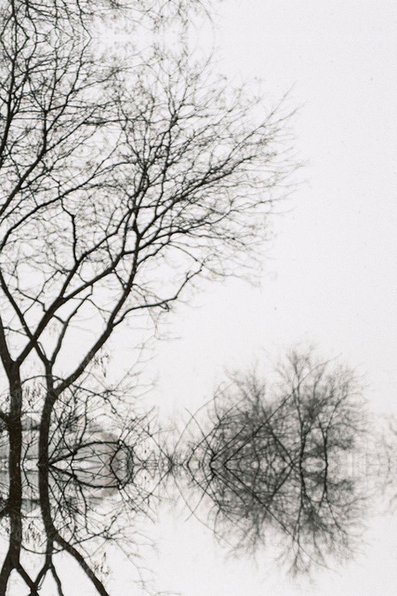 image: -me pareció que los días de nieve eran días de fuego- by noumenow