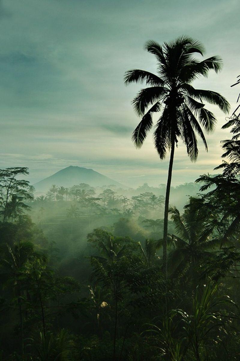 image: Bali by eastofeden