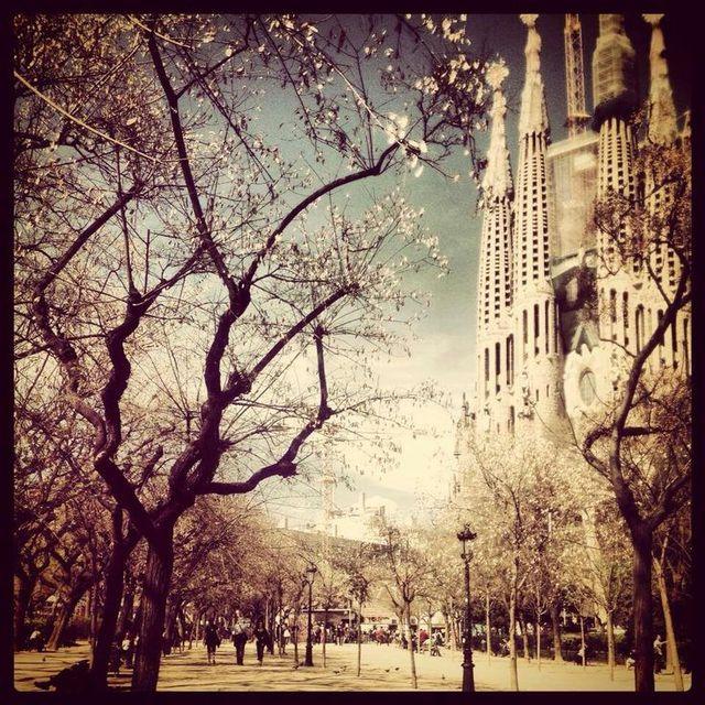 image: Barcelona Beauty by rosabcn