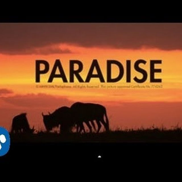 video: PARADISE by reptilia
